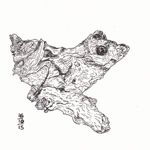 Tree Frog - #Inktober 16