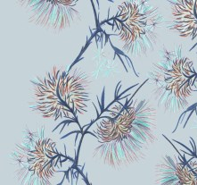 Carduus - Soft blue grey, The Plant Hunter Collection