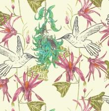 Jade Vine - Vintage Cream, The Plant Hunter Collection