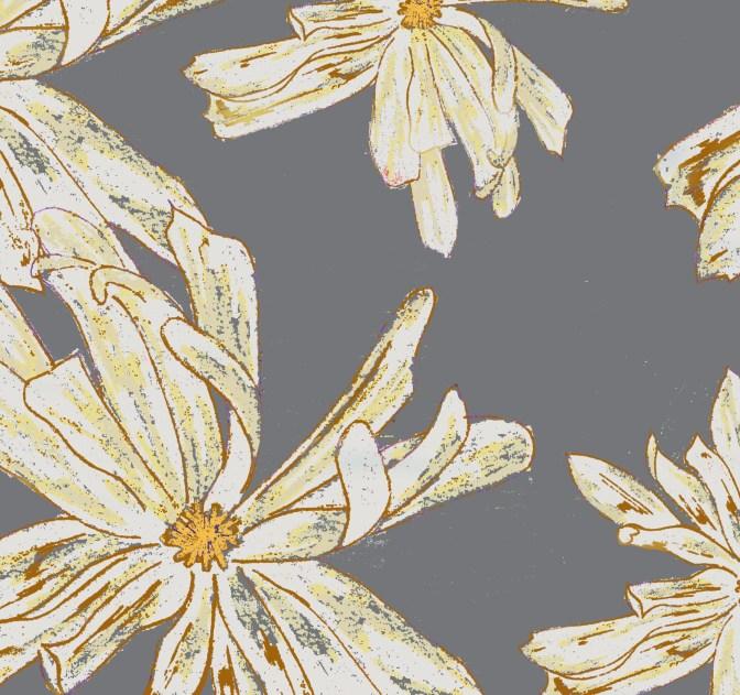 Stellata - Graphite, The Plant Hunter Collectio