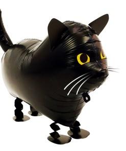 Airwalker schwarze Katze BALLONI Köln