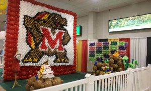Balloon wall, Testudo, State Fair of Maryland, by Balloonopolis, Columbia, SC