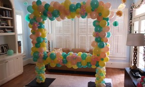 Organic balloon photo frame, by Balloonopolis, Columbia, SC - Photo Frames