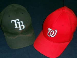 The surprise World Serie pairing that I want to see in October is the Tampa Bay Rays against the Washington Nationals. Photo R. Anderson