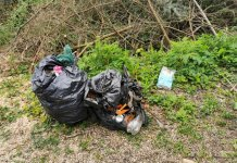 householders-urged-to-keep-causeway-coast-and-glens-clean