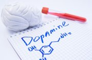 Learn How to Increase the Dopamine Levels to Boost Your Sex Drive