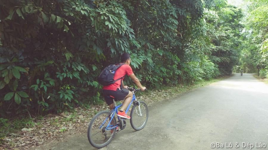 Chồng mình vô cùng sung sức, tung tăng đạp xe khắp đảo