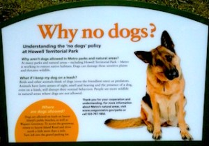 METRO's why no dogs explanation