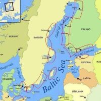 Baltic Sea seal and cormorant TNC project
