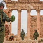 Российские кинематографисты снимут фильм о разминировании Пальмиры