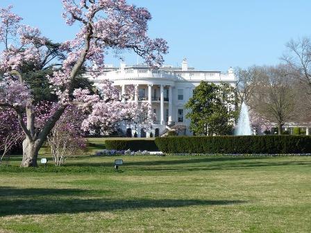 Постпред РФ: В Вашингтоне «почти помешались» на теме вмешательства в выборы