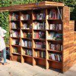 Россотрудничество запустило проект книгообмена за рубежом