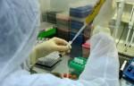 О коронавирусе в Литве сегодня, 21 июля