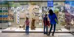 Проект «Культура для школьников» собрал за год более миллиона участников