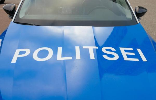 Эстония: избивший свою дочь пьяный мужчина напал на полицейского