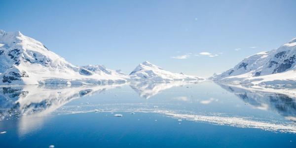 Группа российских школьников открыла новый остров в Арктике