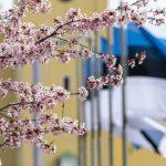 В Эстонии создадут центральный государственный резерв