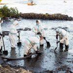 Соотечественники оказывают помощь в устранении последствий экологической катастрофы на Маврикии
