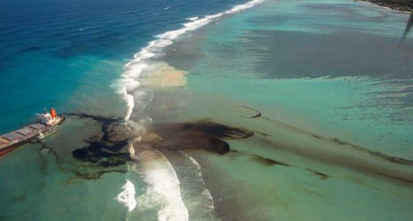 Меч-кладенец, бриллианты против вируса, нефтяные волны Маврикия. Новости от FITZROY на 12 августа
