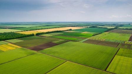 Первые заявки на дальневосточный гектар поступили из 4-х регионов РФ
