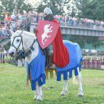 780-летие Невской битвы отметят историческим фестивалем