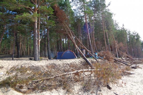 Царство Царникавы: что происходит в 30 километров от Риги