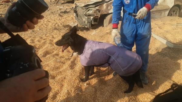 Российские спасатели завершили работу в Бейруте