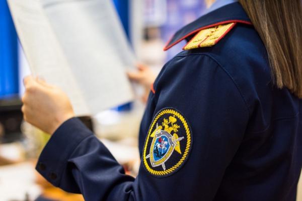 В СК рассказали о сотрудничестве с Германией в расследовании преступлений нацистов