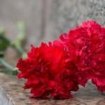 МИД России: каждый год наша страна благоустраивает порядка 300 захоронений советских солдат в других странах
