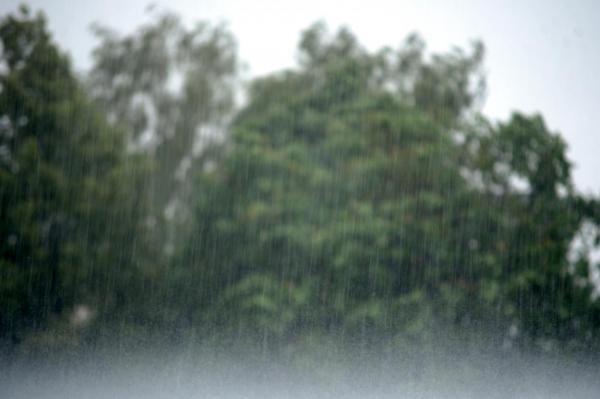 Синоптики предупреждают о сильных порывах ветра; не обойдется без осадков