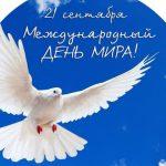 Соотечественники из разных стран примут участие в акции «Голубь мира»