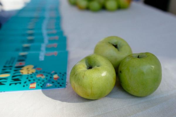 Фестиваль «Антоновские яблоки» проходит в Коломне