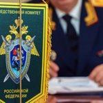 Отдельное подразделение СК займется делами о фальсификации истории