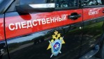 СК возбудил уголовное дело по факту казни нацистами мирного населения в Ленинградской области