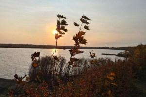 Раскрыт прогноз погоды на понедельник в Латвии