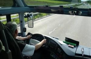 В Рапламаа рейсовый автобус сбил лося и заглох посреди дороги