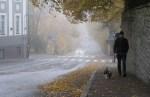 Прогноз погоды в Эстонии на воскресенье, 1 ноября