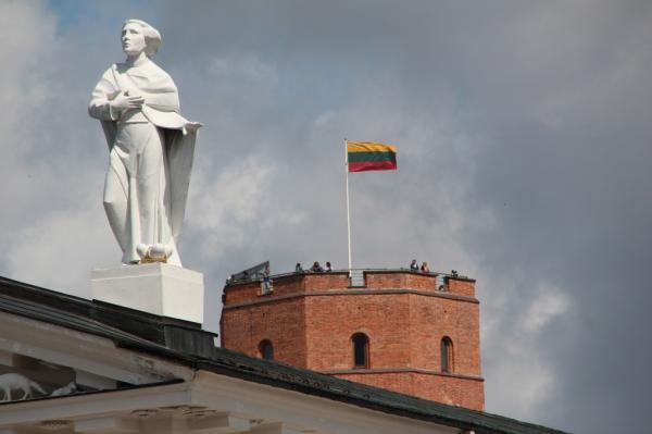 Вильнюс продолжает попытки искажения истории и сведения счётов с Москвой, считают в МИД РФ