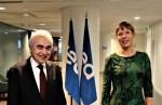 Кальюлайд в Париже призвала создавать действенные энергорынки