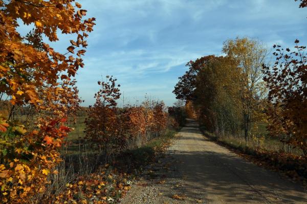 Начало октября в Латвии объявлено феноменально тёплым