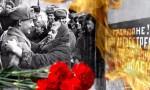 Стартовал международный проект «Ленинградское спасибо», посвящённый битве за Ленинград