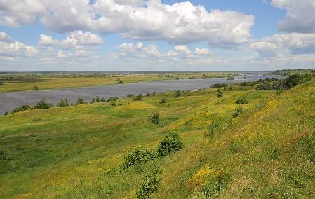 В Рязанской области рассказали о новых требованиях к участникам госпрограммы переселения соотечественников из-за рубежа