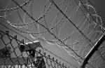 «Паэский бомбист» Мярт Рингмаа вышел на свободу