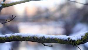 В ближайшие дни в Латвии похолодает