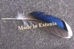 Численность населения Эстонии увеличивается только за счёт миграции