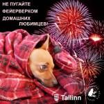 В таллинском районе Ласнамяэ запустят два официальных новогодних салюта