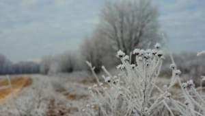 Синоптики рассказали, продлится ли в Латвии мороз