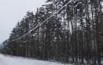 Погодные условия вызвали проблемы с электроснабжением Вирумаа
