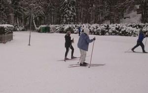 Бесплатные лыжные трассы Ласнамяэ ждут всех желающих