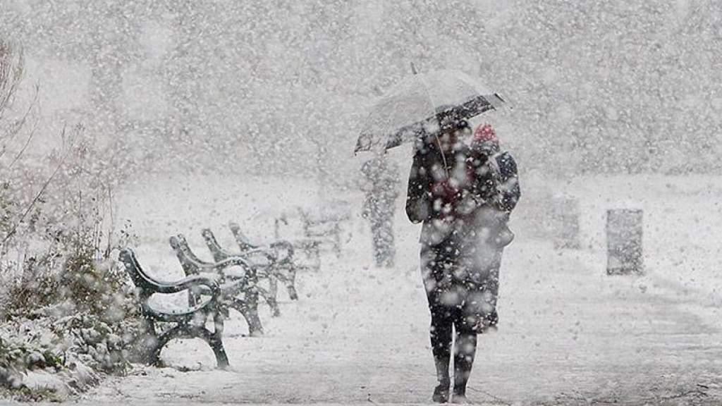 Синоптики подтвердили: правительство вовремя реабилитировало лопаты для снега